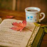 Libri: come tenerli? Tutti i segreti per una libreria da sogno.