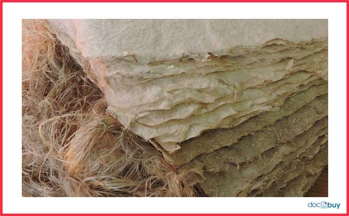 pianta di canapa carta naurale