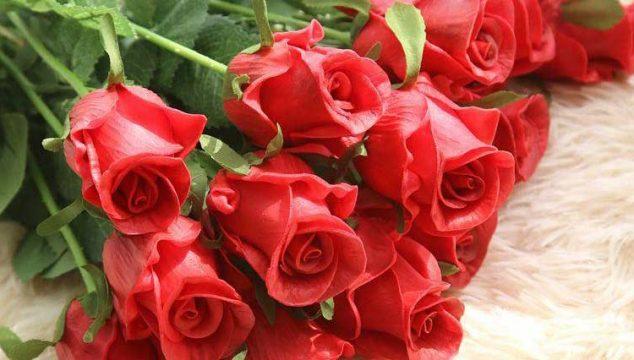 comprare fiori online - rose rosse cover