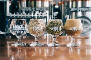 gli ingredienti della birra